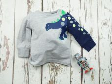 Blade & Rose Stegosaurus Long Sleeved Top