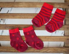 Blade & Rose Christmas Pudding Socks