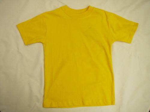 """Round Neck School T-Shirt Unisex: 24"""" (3-4yrs) GOLD"""